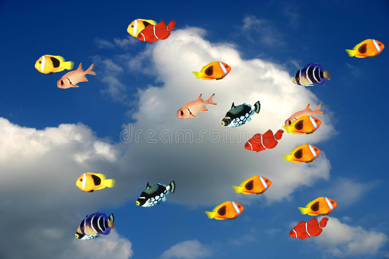 Vissen tegen blauwe hemel stock illustratie