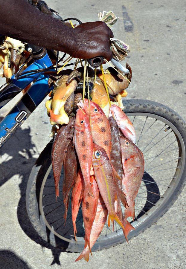 Vissen voor verkoop royalty-vrije stock afbeelding