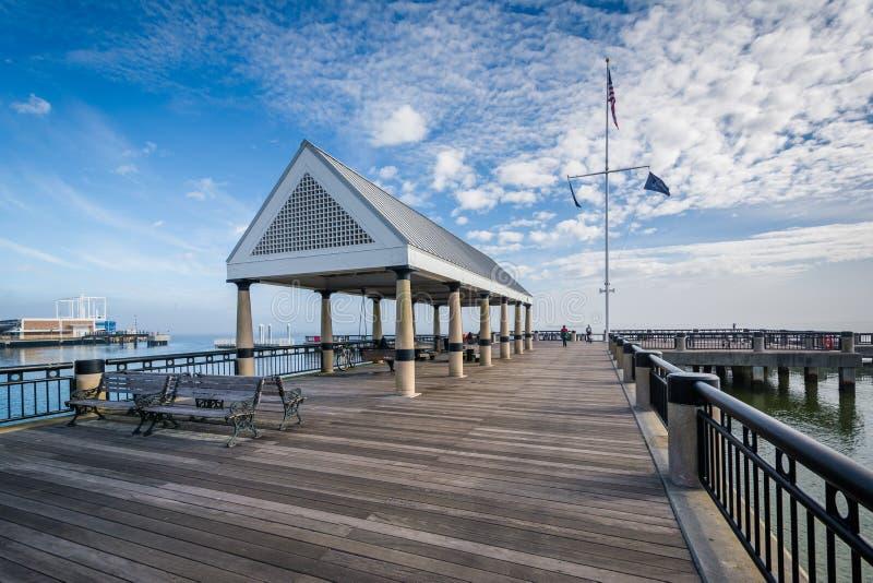 Vissend pijler bij het Park van de Waterkant, in Charleston, Zuid-Carolina royalty-vrije stock afbeeldingen