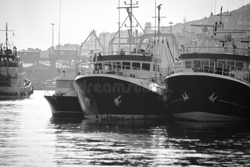 Vissende haven stock foto's
