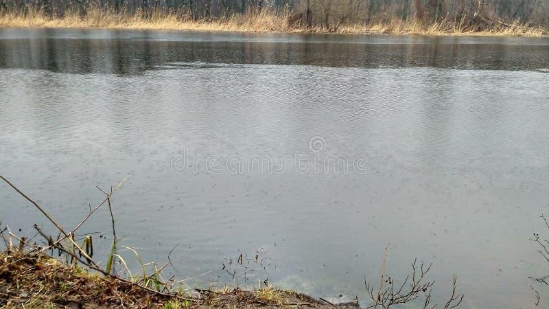 Vissende rivier royalty-vrije stock foto