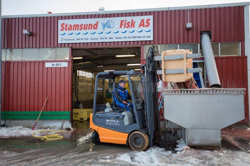 Vissenfabriek stock foto