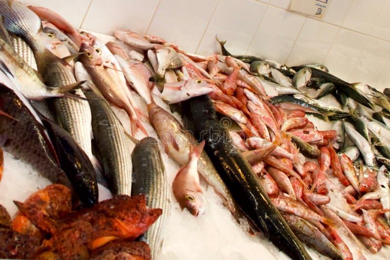 Vissenmarkt, Lakki-Stad, Leros, Dodecanese, Griekenland, Europa stock fotografie