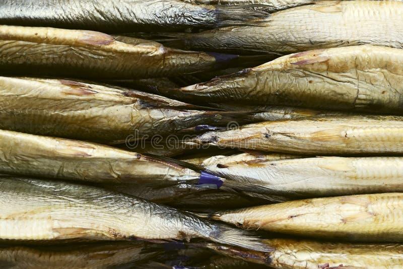 Vissenwinkel, vissen op teller Staarten van gerookte vissen op de teller in de opslag royalty-vrije stock foto's