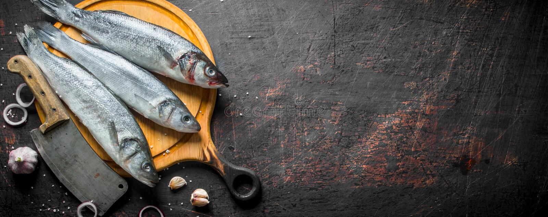Vissenzeebaars ruw op een knipselraad met een mes stock fotografie