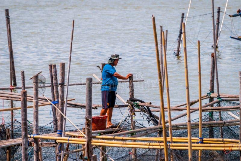 Visser bij het platform, Songkhla-meer stock afbeeldingen