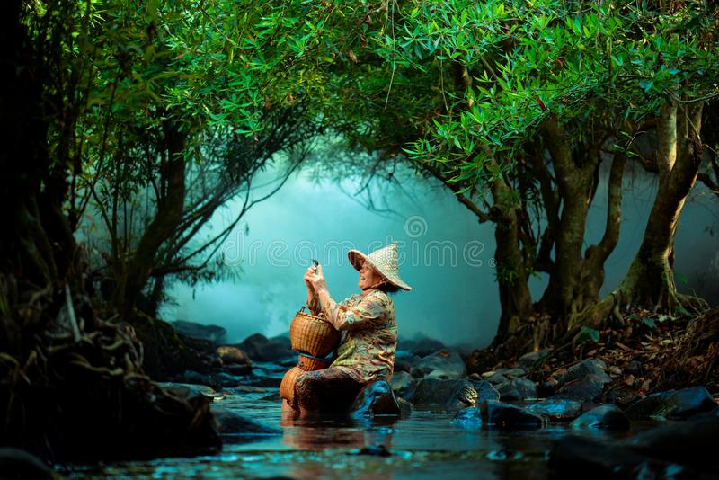 Visser in de rivier in Chiangmai stock foto