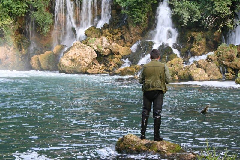 Visser en de watervallen royalty-vrije stock foto