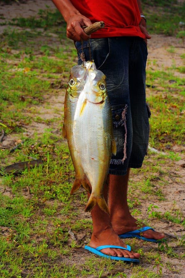 Visser met vissen royalty-vrije stock fotografie