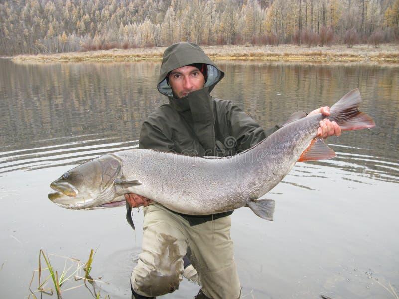 Visser met vissen stock foto