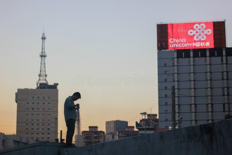 Visser in Shanghai stock foto's