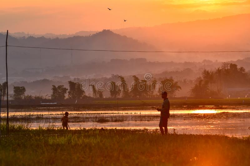 Visserij bij moeras met zonsondergangachtergrond royalty-vrije stock afbeelding