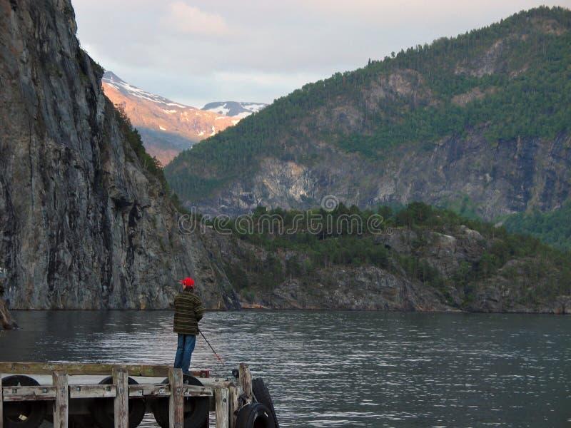 Visserij in een fjord stock fotografie