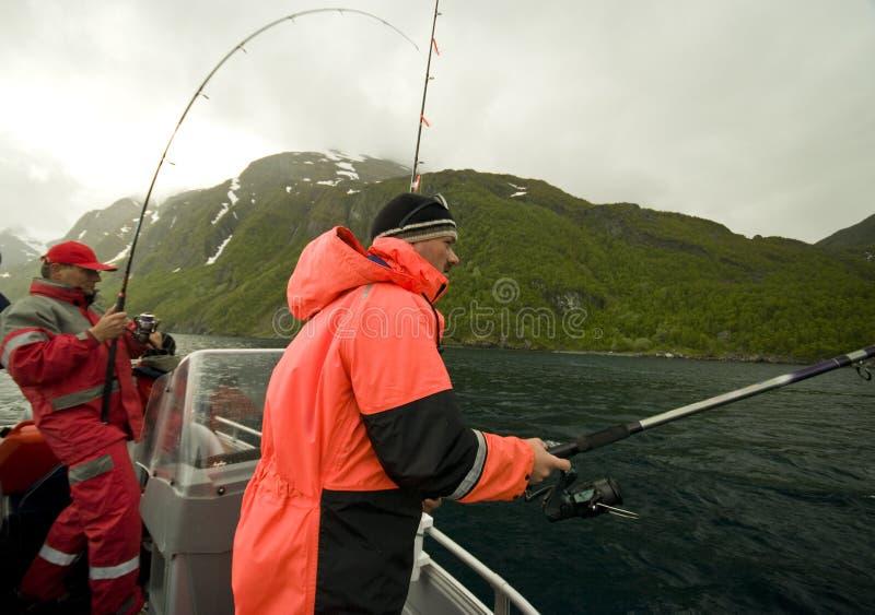 Visserij in fjord stock foto's