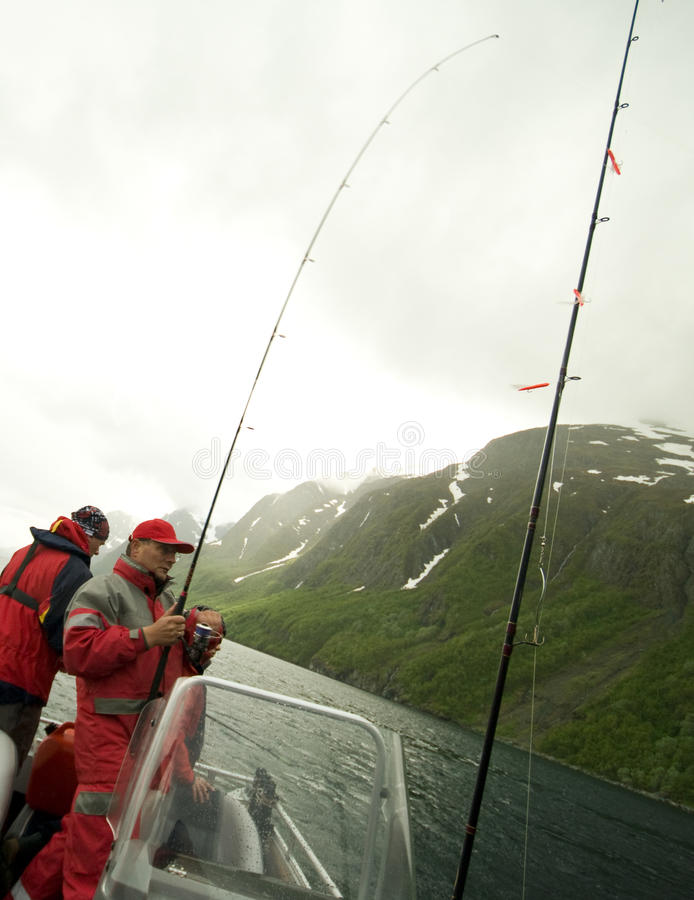Visserij in fjord stock foto
