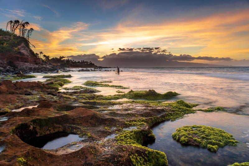 Visserij in Maui royalty-vrije stock foto's