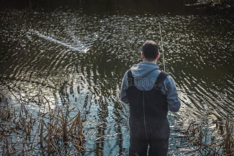 Visserij op het meer op een zonnige dag stock afbeeldingen