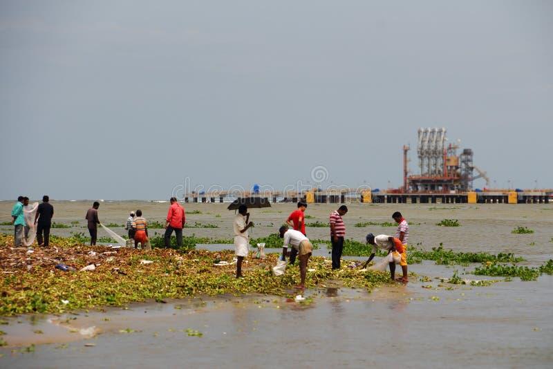 Visserij in stortplaatsen in Cochin (Kochin) van India royalty-vrije stock afbeelding