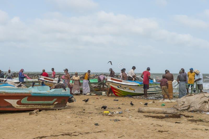 Vissers die de netten controleren bij het strand royalty-vrije stock foto