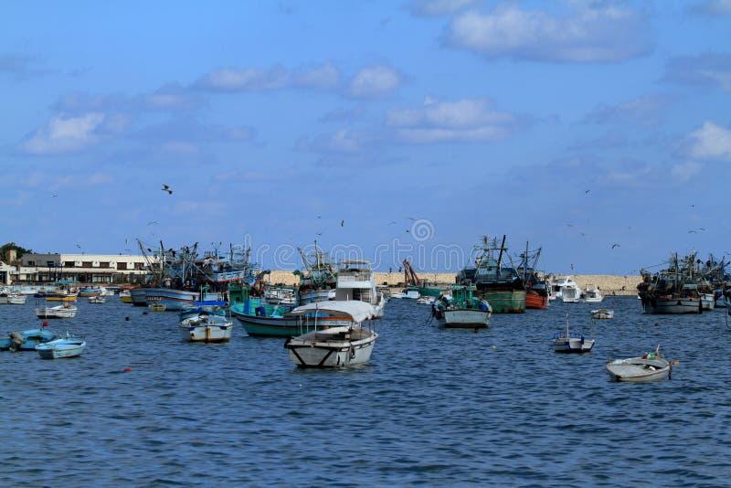Vissersboten in de haven van Alexandrië stock afbeeldingen