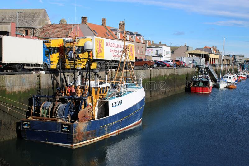 Vissersboten en zeevruchtenvrachtwagen, Eyemouth-haven royalty-vrije stock foto