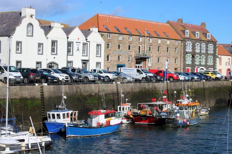 Vissersboten, kade, gebouwen Eyemouth, Schotland stock fotografie