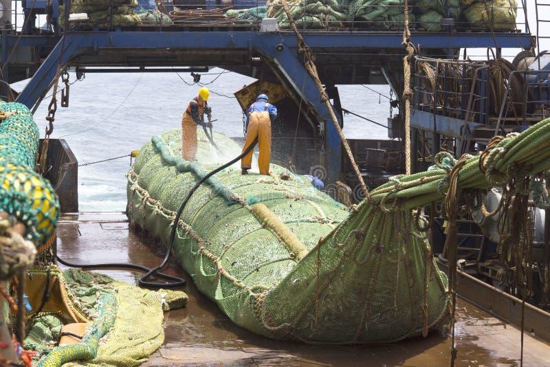 Vissersvaartuig. Grote vangst van vissen in knechtschap. royalty-vrije stock afbeelding