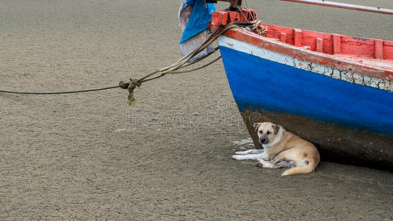 Vissersvaartuigen van Pak Nam Pram, Thailand royalty-vrije stock fotografie