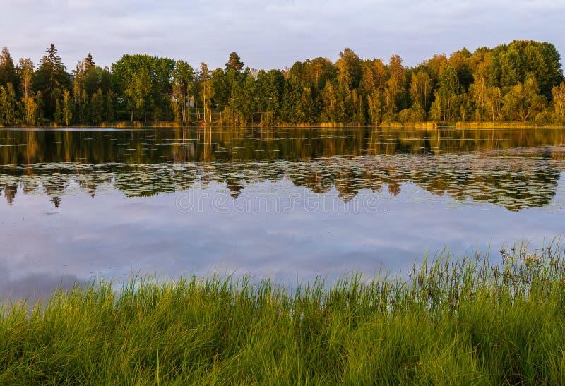 Vista à paisagem quieta do lago em Finlandia imagens de stock