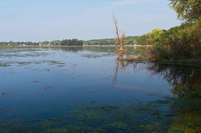 Vista λιμνών Whitewater στοκ φωτογραφίες