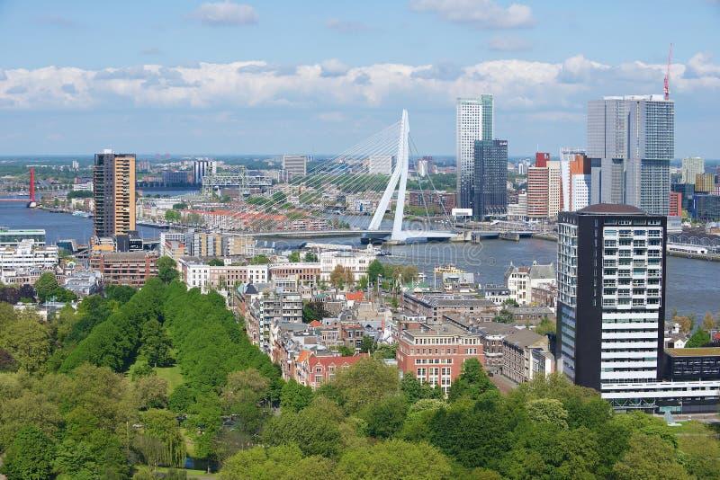 Vista aérea às construções modernas da ponte de Rotterdam e de Erasmus em Rotterdam, Países Baixos fotografia de stock