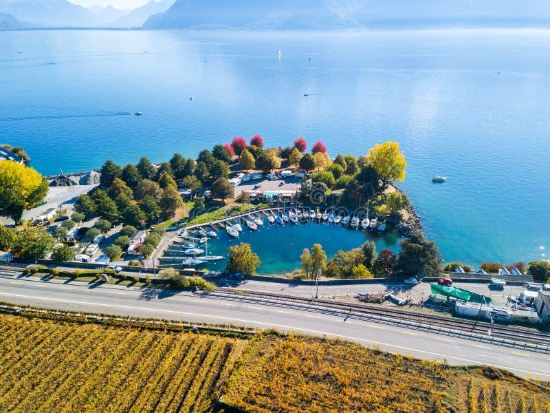 Vista aérea com o zangão sobre vinhedos e baía do lago foto de stock