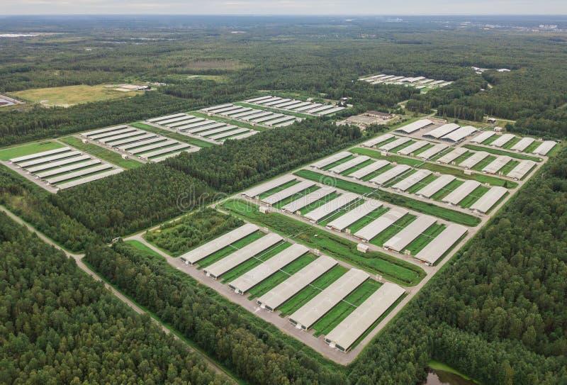 Vista aérea da exploração avícola imagens de stock