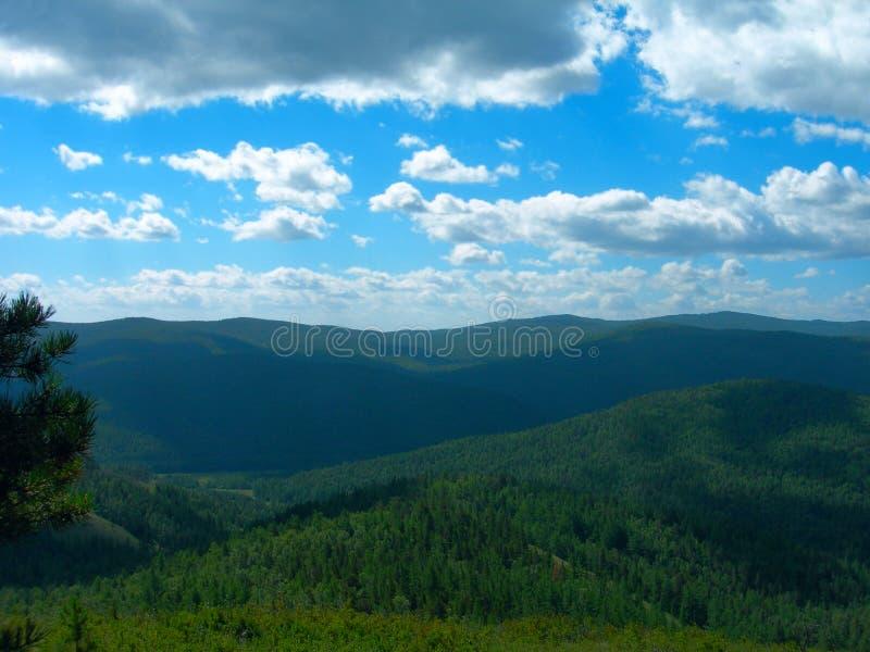 A vista aérea da floresta Siberian densa fotografia de stock