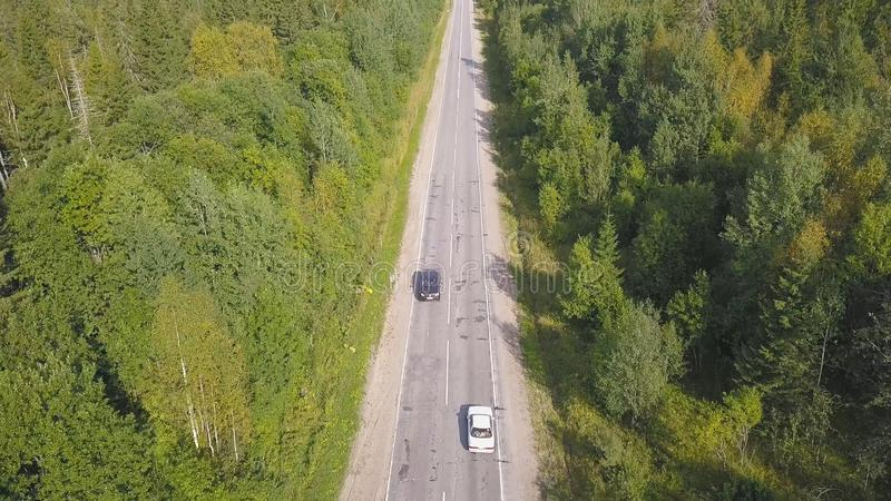 Vista aérea da planície da floresta e carro que estão montando na estrada grampo Ideia superior da equitação do carro na estrada  fotografia de stock