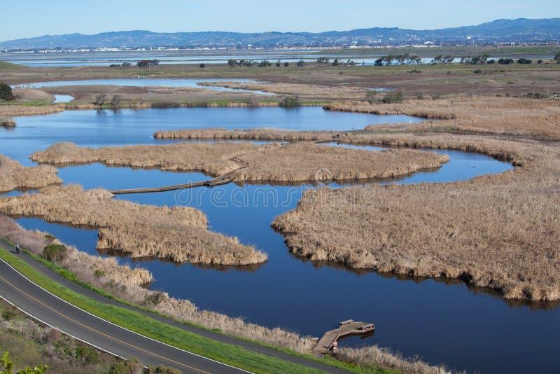 Vista aérea da região pantanosa molhada imagens de stock