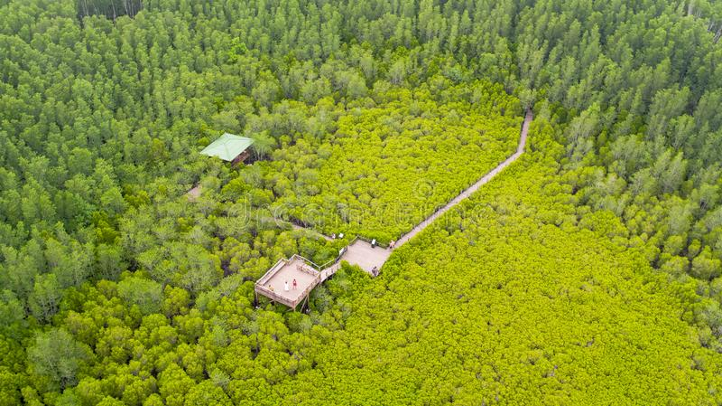 Vista aérea da tanga do dente de Thung, Rayong, Tailândia imagem de stock royalty free
