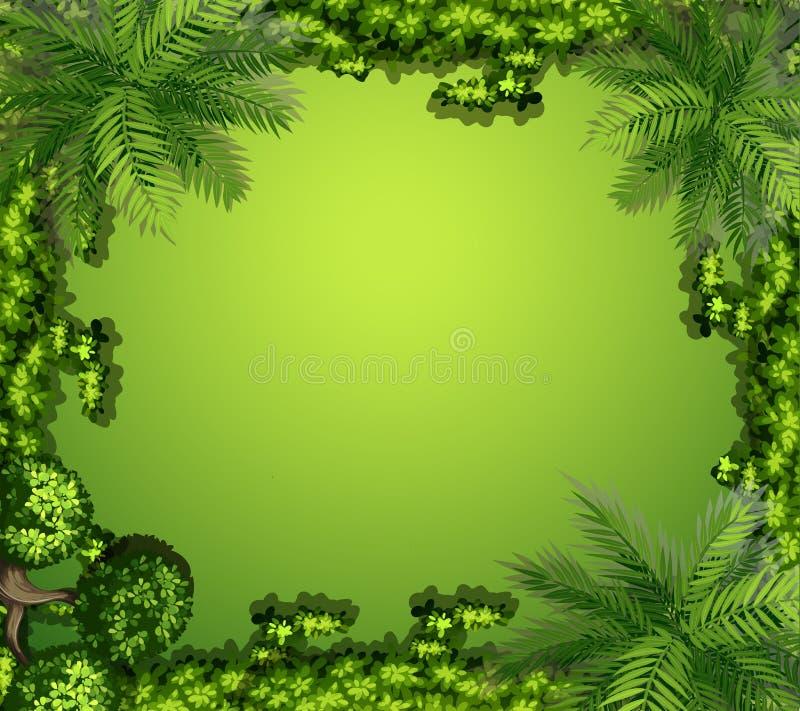 Vista aérea das plantas e das rochas ilustração royalty free