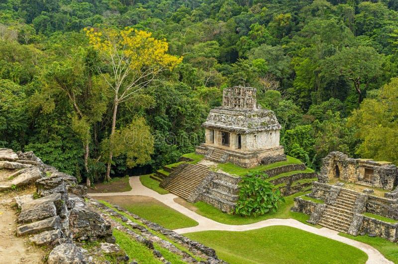 Vista aérea das ruínas maias de Palenque, México imagens de stock royalty free