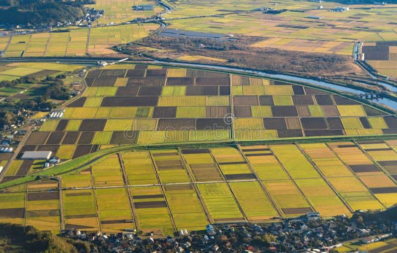 Vista aérea de campos agrícolas en el campo de Japón en el SP imágenes de archivo libres de regalías