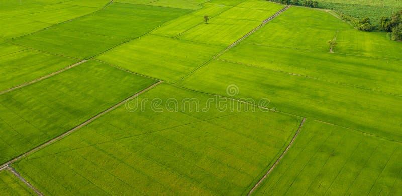Vista aérea de campos con los diversos tipos de agricultura en rural fotografía de archivo