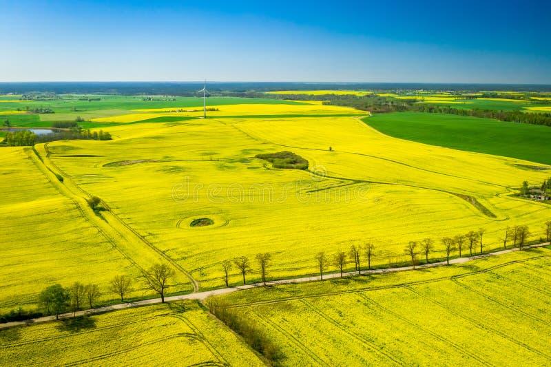 Vista aérea de campos e da turbina eólica verdes da violação fotografia de stock royalty free