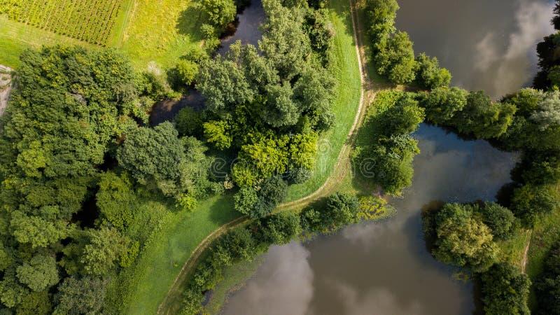 Vista aérea de Ciron e de floresta, Gironda, França foto de stock