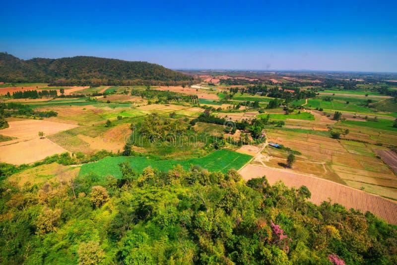 A vista aérea de desmata a floresta imagens de stock royalty free