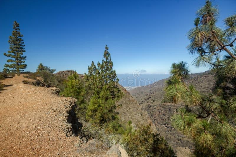 Vista aérea de Hell Gorge - Barranco del Infierno é um corvo localizado perto da aldeia de Adeje, no sul de Tenerife Fino fotografia de stock royalty free