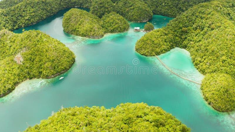 Vista aérea de la laguna de Sugba, Siargao, Filipinas foto de archivo
