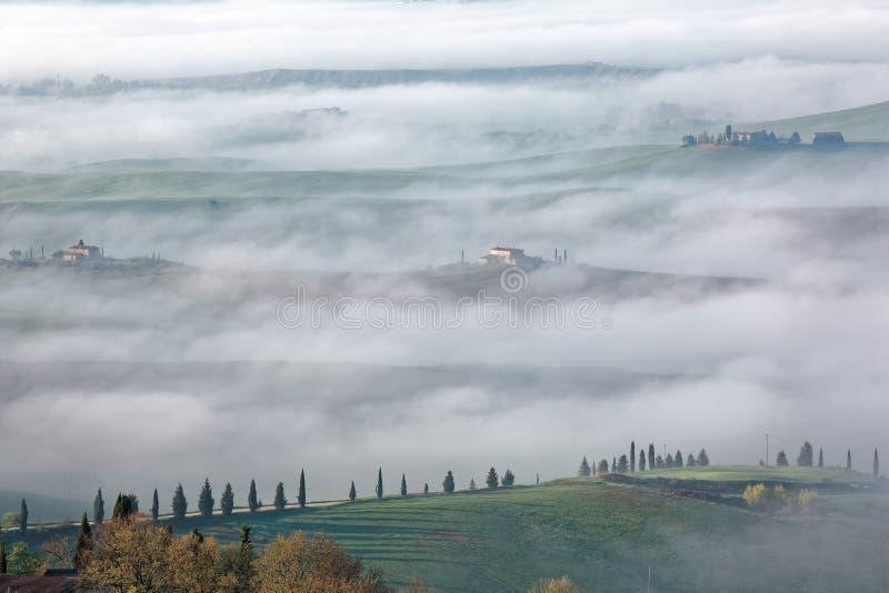Vista aérea de los cortijos de la cumbre y de los árboles de ciprés en Toscana en una mañana de niebla de la primavera ~ imagen de archivo