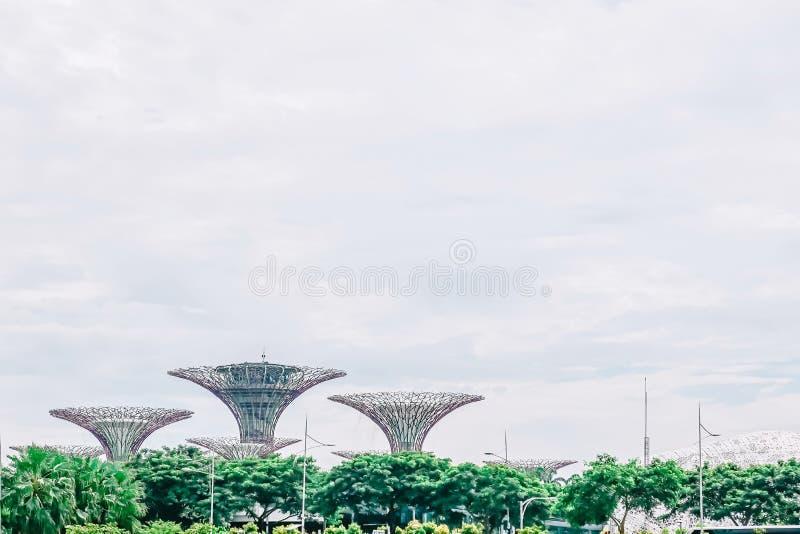 Vista aérea de los supertrees jardín botánico, jardines por la bahía en la bahía Singapur del sur foto de archivo libre de regalías