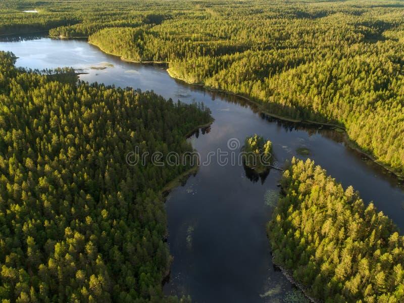 Vista aérea de um lago cercado aka pelo taiga boreal denso imagens de stock