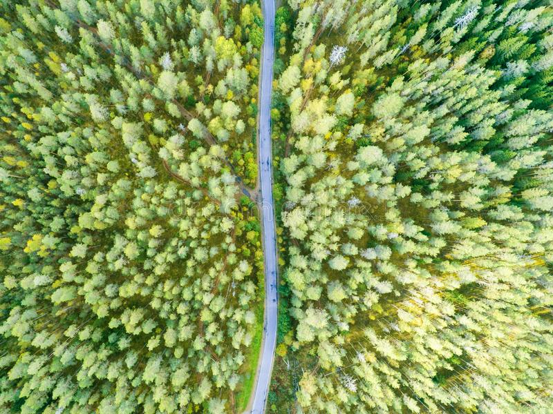 Vista aérea de uma estrada secundária na floresta com carros moventes Paisagem bonita Capturado de cima com de um zangão ` Aéreo  imagens de stock